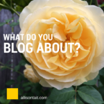 Puppies and roses… what do you blog about?