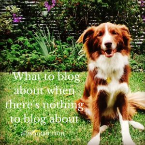 what to blog about when there's nothing to blog about