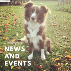 News and events A.L. Tait July 2017